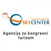 Skyini-logo